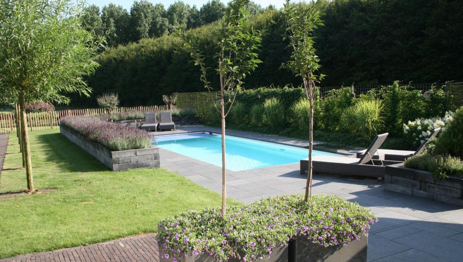 Kleine ontwerp tuin met zwembad tuinaanleg moderne tuin hoog
